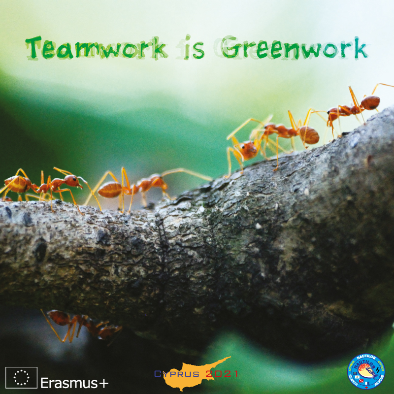 TeamworkisGreenwork Banner 001667